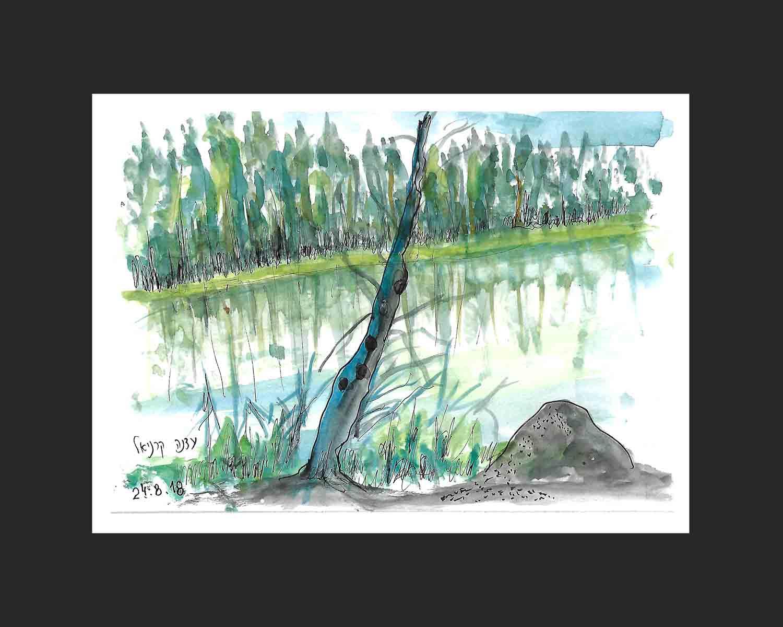 עדנה קרניאל 2018-שמורת טבע ביער עד לאגם